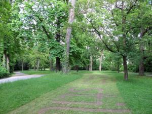 5Ralf_Witthaus_Ringpark_Würzburg-dass-das-Herz-rast-2014-IMG_5150-